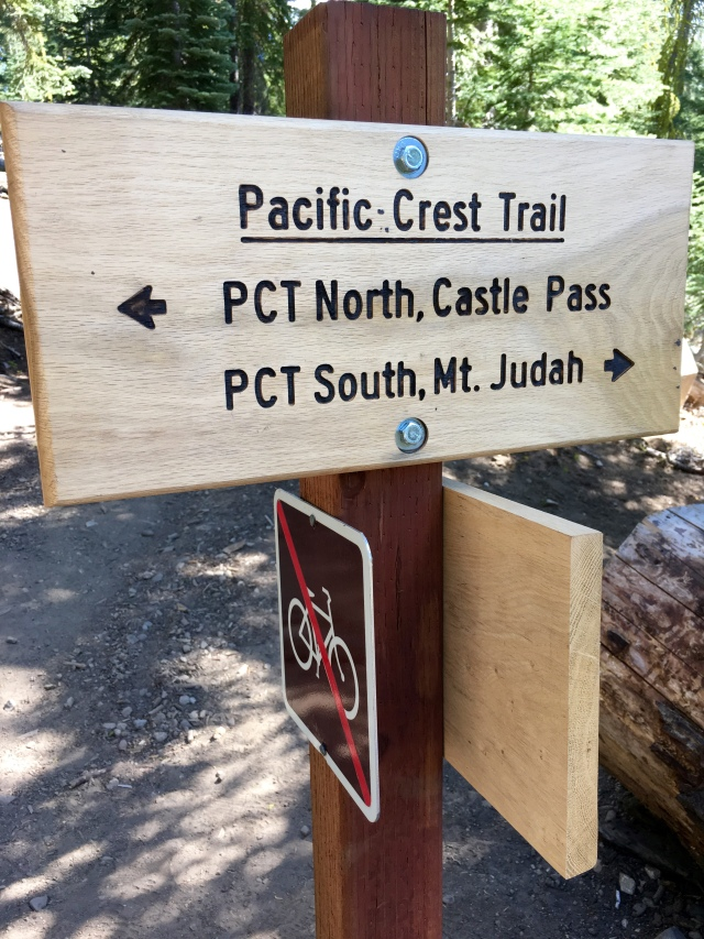Stay on the PCT North, toward Castle Pass.