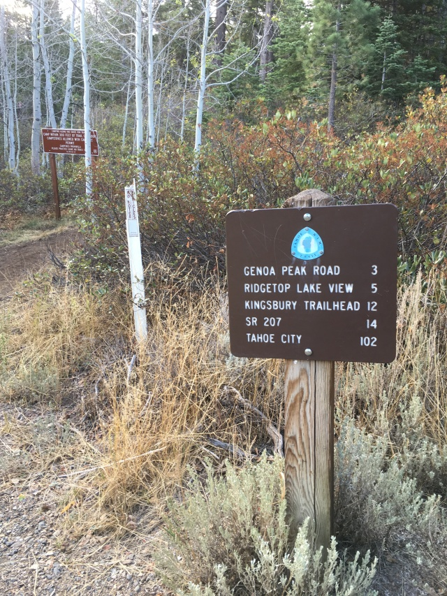 Trailhead at Spooner Summit