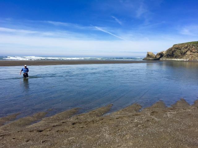 Seaside Wading
